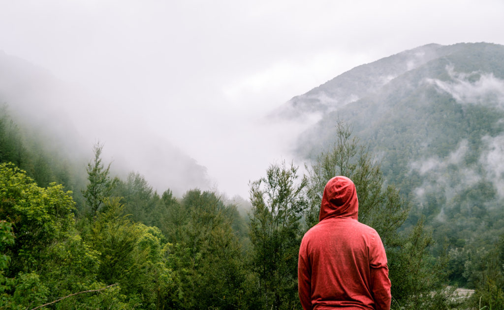 Canva Person Wearing Red Hoodie Standing Near Trees With Mountain at Distance